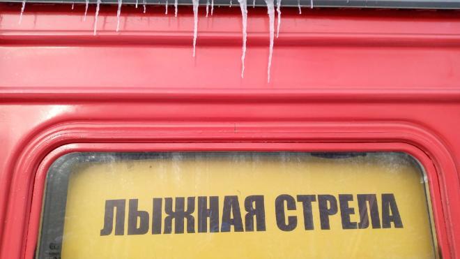 """Расписание """"Лыжных стрел"""" изменилось из-за февральских праздников"""