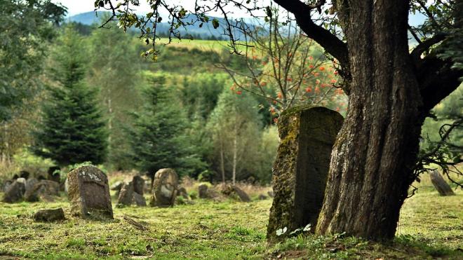 У пенсионера из Ленобласти украли надгробие на будущую могилу