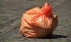 После новогодних гуляний горожан в центре Петербурга собрали 140 кубометров мусора