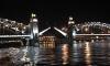 Женщина, чье тело вмерзло в лед у Большеохтинского моста, скорее всего покончила жизнь самоубийством