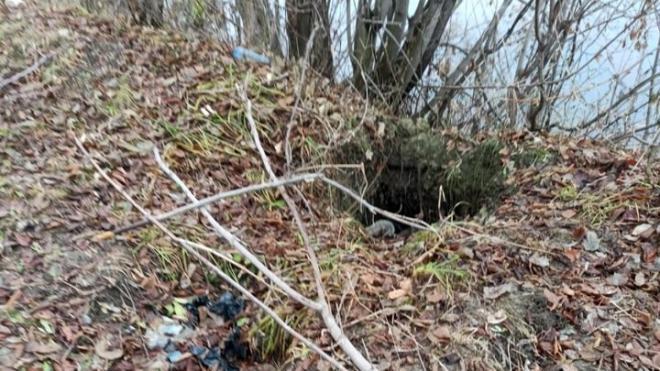 В Новосибирске нашли скелет неизвестного мужчины