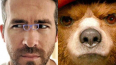 Райан Рейнолдс поссорился в Twitter с медвежонком ...
