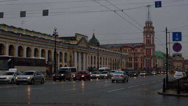 У Гостиного двора прошли одиночные пикеты в поддержку Михаила Светова