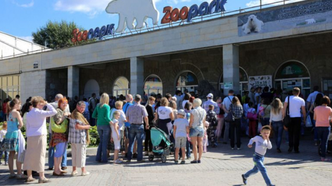 Эксперт: Петербургу нужен новый зоопарк для крупных зверей