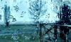 МЧС: во вторник в Петербурге усилится ветер