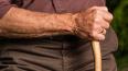 Во Фрунзенском районе до смерти забили 82-летнего ...