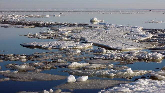 На Северной верфи оператор одного из каналов Петербурга упал в воду