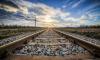 На Октябрьской железной дороге с начала года погибло 73 человека