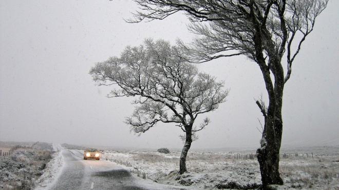 В Ленобласти 24 марта ожидается усиление ветра до 15-17 м/с