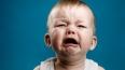 Голландские спецслужбы внесут малолетних детей в списки ...