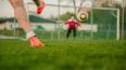 Финская футбольная сборная приедет тренироваться в Зелен...