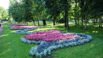 В 2019 году главной темой петербургских цветников станет театр