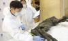 В Якутии обнаружено мумифицированное тело жеребенка