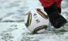 Сборные ФНЛ и итальянской серии B сыграют в Петербурге зимой