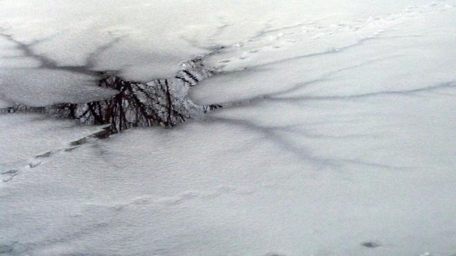 Водолазы обнаружили тело провалившейся под лед девочки в Лахтинском разливе