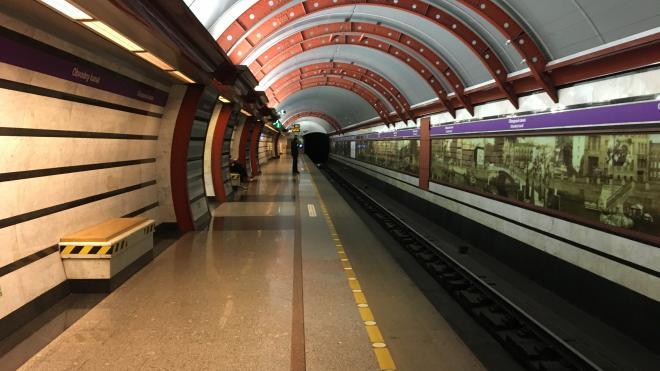 """Движение на """"фиолетовой"""" ветке метро в Петербурге останавливалось из-за задымления в перегоне"""