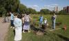 В Петербурге рассмотрят причисление парка Малиновка к зеленым зонам