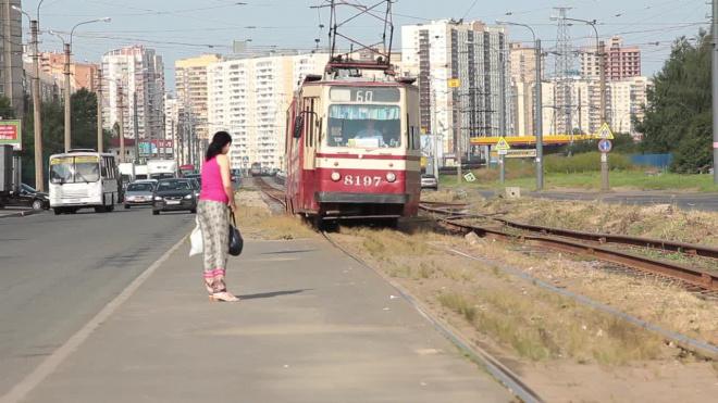 Трамваи и автобусы изменят маршруты из-за ремонта на Среднеохтинском
