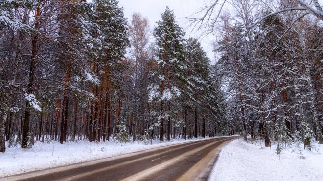 МЧС предупредило жителей Ленобласти о снегопаде и гололедице