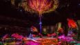 Петербуржцы смогут побывать на шоу Cirque du Soleil ...