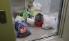 В Кудрово неизвестное быдло забыло 10 пакетов мусора в лифте