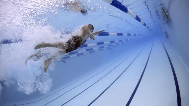 Выборгские спортсмены заняли весь пьедестал почета на Чемпионате по плаванию