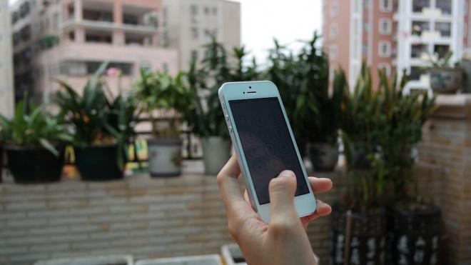 Юный петербуржец украл у постояльца гостиницы iPhone и с его помощью стал миллионером