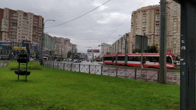 В Приморском районе Петербурга закрыли дороги