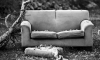 Ревнивая петербурженка задушила мужа ремнем, спрятала труп в диван и сбежала из города