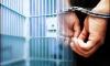 Полиция Фрунзенского района повязала четверых подозреваемых в недавних преступлениях