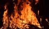 В ночных пожарах в Ленобласти погибли три человека