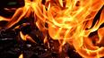 На Товарищеском проспекте девять пожарных тушили иномарк...