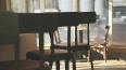 В Центральном районе Петербурга посетитель кафе украл ...