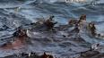 Из-за разлива нефти на Ангаре в Свирске введен режим ЧС
