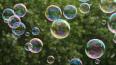 На 1 июня библиотеки Петербурга запустят мыльные пузыри