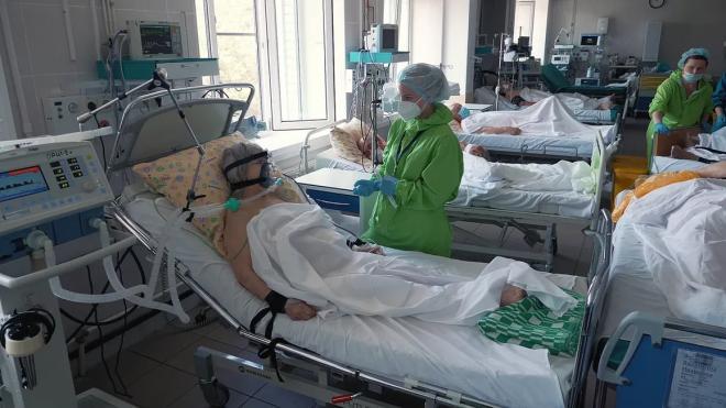 В больницах и поликлиниках Петербурга работают более двух тысяч студентов-медиков