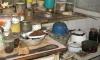 Петрозаводский суд отказался выселять из квартиры старушку, живущую с трупами животных
