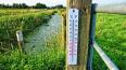 Днем в Ленобласти температура воздуха поднимется до +26