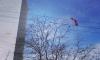 Питерские экстремалы совершили опасный прыжок со 140-метрового здания в Петербурге