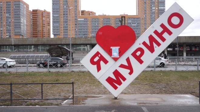 Петербуржцы назвали Мурино более комфортным для жизни, чем Кудрово