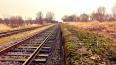 На станции Ручьи 19 -летний петербуржец получил травмы, ...