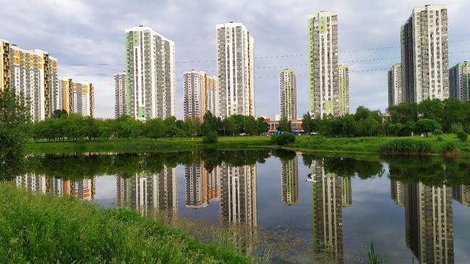 """Специалисты ищут источник зловония в пруду парка """"Героев-пожарных"""""""