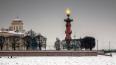 В Петербурге горят Ростральные колонны в память о ...