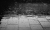 В Петербурге в четверг будет дождливо