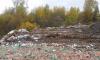 В Колпино обнаружили огромную незаконную свалку