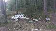 В Ломоносовском районе Ленобласти нашли очередную свалку