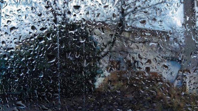 Воскресенье в Петербурге ожидается туманным и дождливым