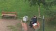 В Колпине пьяный мужик стреляет из пистолета по детской ...