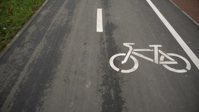 Компанию, уложившую велодорожки в Московском районе, оштрафовали за уничтоженный газон и кусты сирени
