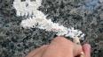 На Черноморское побережье Румынии вынесло 130 кг кокаина